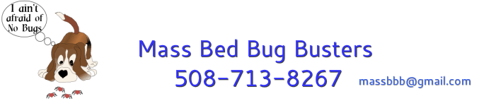 Mass Bed Bug Busters